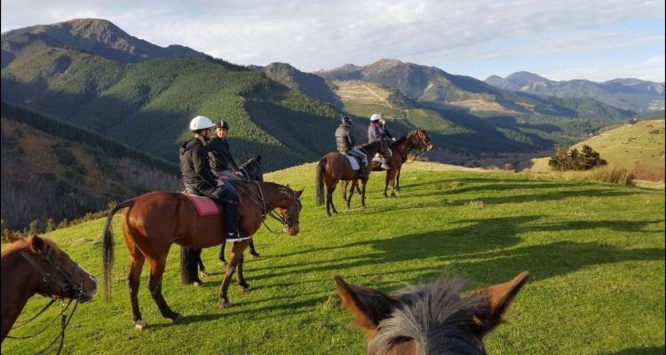 Hanmer Horse Trekking